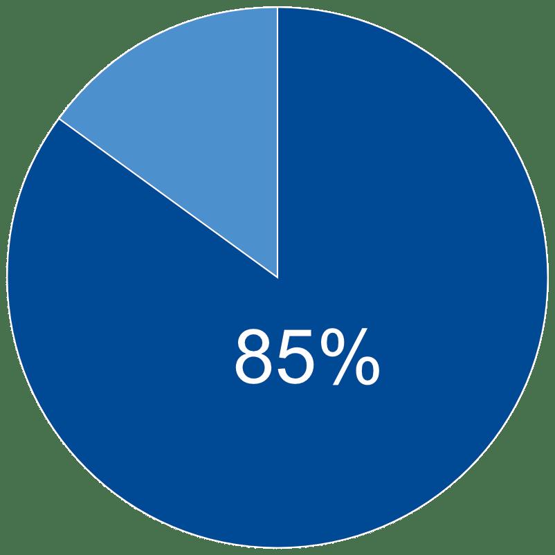 85 Percent Pie Chart