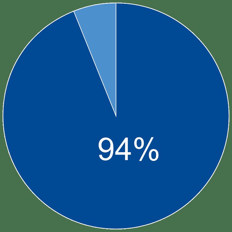 94 Percent Pie Chart