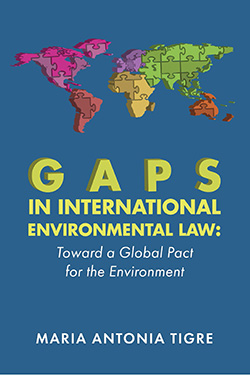 Tigre's Gaps in International Environmental Law: Toward a Global Pact for the Environment